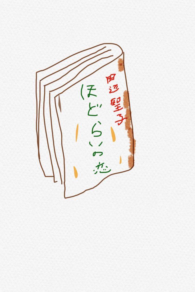 田辺聖子 角川文庫 ほどらいの恋